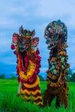 Det kinesiska nya året 2019 för lejondans royaltyfri fotografi