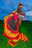 det kinesiska nya året för lejondans på risfältfält arkivbilder