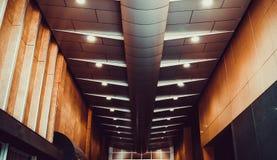 Det konstnärliga taket Royaltyfri Foto