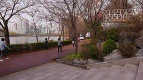Det koreanska folket går i vår parkerar längs sjön, Seoul arkivfilmer