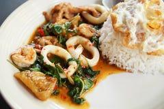 Det kryddigt av thailändsk mat Royaltyfri Foto