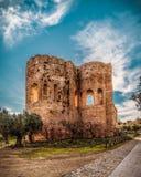 Det kyrkliga tornet i Scolacium parkerar royaltyfri bild
