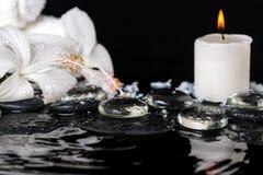 Det lågtemperatur- brunnsortbegreppet av den delikata vita hibiskusen, zen stenar intelligens Arkivfoton