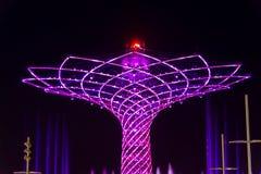 Det långa exponeringsnattfotoet av det härliga ljuset och vatten visar från trädet av liv Royaltyfri Foto