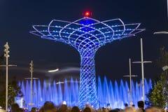 Det långa exponeringsnattfotoet av det härliga ljuset och vatten visar från trädet av liv Royaltyfria Bilder