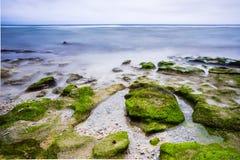 Det långa exporsurehavet och vaggar på stranden Royaltyfri Fotografi