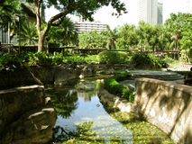 Det långa slingriga dammet, grönt bältegalleria parkerar, Makati, Filippinerna fotografering för bildbyråer