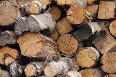 Det lade en hög av trä påtänkt för att tända pannan Arkivfoto
