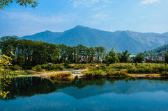 Det lantliga landskap Royaltyfria Bilder