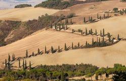 Det lantliga landskapet av Tuscanyen Arkivbild