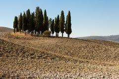 Det lantliga landskapet av Tuscanyen Royaltyfri Fotografi