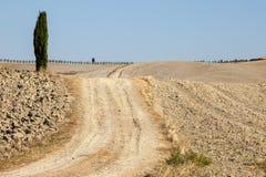 Det lantliga landskapet av Tuscanyen Royaltyfria Bilder