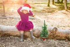 Det lilla barnet för blandat lopp behandla som ett barn flickan som har gyckel med Santa Hat och ett träd royaltyfri foto