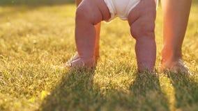 Det lilla barnet lär att gå Behandla som ett barn första steg på gräs arkivfilmer