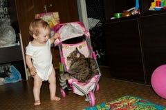 Det lilla lilla barnet rullar hans stora katt i ett litet behandla som ett barn leksaksittvagnen royaltyfri fotografi