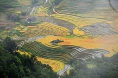 Det lilla huset i ris terrasserar, Sapa, Vietnam Arkivfoto