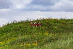 Det lilla leksakhuset i Island land av älvorna och fiska med drag i arkivbild