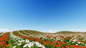 Det livliga blommafältet 3D framför royaltyfri illustrationer