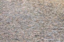 Trä texturerar closeupen Royaltyfri Bild