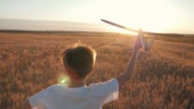Det lyckliga barnet kör med ett leksakflygplan på en solnedgångbakgrund över ett fält Begreppet av en lycklig familj Barndom stock video