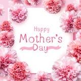 Det lyckliga meddelandet för dagen för moder` s på rosa nejlika blommar royaltyfri fotografi