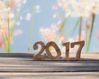 Det lyckliga nya året 2017 på träplanka- och suddighetsgräs blommar bakgrund Royaltyfri Fotografi
