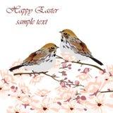Det lyckliga påskkortet med fåglar och våren blommar Arkivfoto