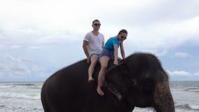 Det lyckliga unga paret rider på en elefant på bakgrunden av ett tropiskt hav arkivfilmer
