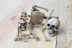 Det mänskliga skalle- och människaskelettet sörjer på träbakgrund Royaltyfri Fotografi