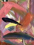 Det målade fingret smetar i en regnbåge av färger royaltyfri foto