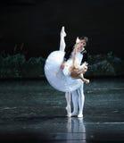 Det melankoliskt av Ojta lät bedröva-balett för prins mycket svan sjön fotografering för bildbyråer