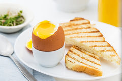 Det mjuka kokta ägget med rostat bröd för rich frukosterar Arkivbild
