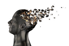Det mänskliga huvudet bryter in i stycken Arkivfoto