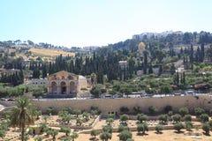 Det Mount of Olives landskapet, Jerusalem Arkivbild