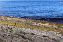 Det mycket blåa havet och vaggar Royaltyfria Foton