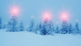 Det mystiska vinterlandskapet med träd på julljus skiner Arkivfoto