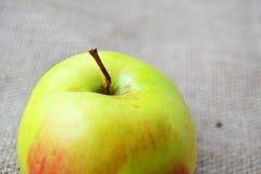 Det nära fotoet av äpplet Royaltyfri Fotografi