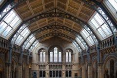 Det nationella historiemuseet, är ett av det mest favorit- museet för familjer i London Arkivbilder
