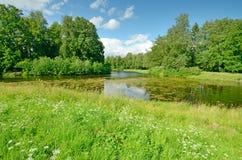 Det naturliga landskapet på våren Royaltyfri Bild