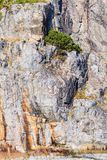 Det naturliga skottet av vaggar stenen texturerade väggen Arkivbilder