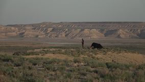 Det near campa tältet för manställning vid solnedgången 50p lager videofilmer