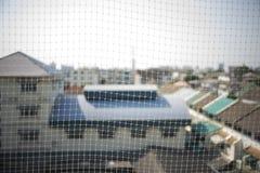 Det netto som förhindrar fågeln för att bo på balkongen av byggnaden Arkivfoto