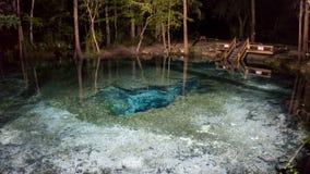 Det Nigth fotoet av yttersidan av vattnet od jäklarna gå i ax grottan i Ginnie Springs arkivfoto