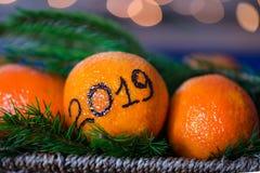 Det nya året 2019 är det kommande begreppet Royaltyfria Bilder