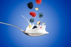 Det nya hallonet, blåbär som plaskar in i, mjölkar eller yoghurten Royaltyfri Foto