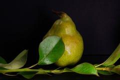 Det nya mogna organiska päronet på mörk bakgrund bantar mat Arkivbild