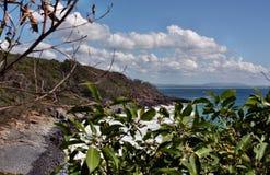 Det oerhörda landskapet av den Noosa nationalparken på kust för solsken för Queensland ` s, AustraliaThe oerhört landskap av Noos royaltyfri bild
