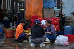 Det oidentifierade folket bearbetar fisken på Qui Nhon fiskport i morgonen Royaltyfria Bilder