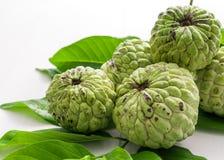 Det organiska vaniljsåsäpplet, sockeräpplet, ingen sweetsopfrukt retuscherar sk Royaltyfri Fotografi