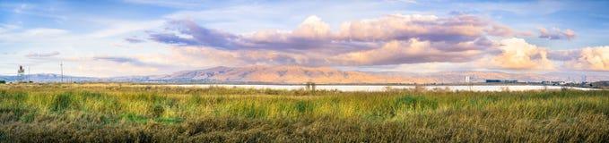 Det panorama- solnedgånglandskapet av träsken av södra San Francisco Bay, beskickningmaximumet som täckas i den färgade solnedgån Royaltyfri Fotografi
